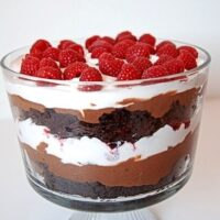 Glass bowl filled with alternating layers of chocolate brownie, chocolate pudding, white cool whip and topped with red raspberries on a white background