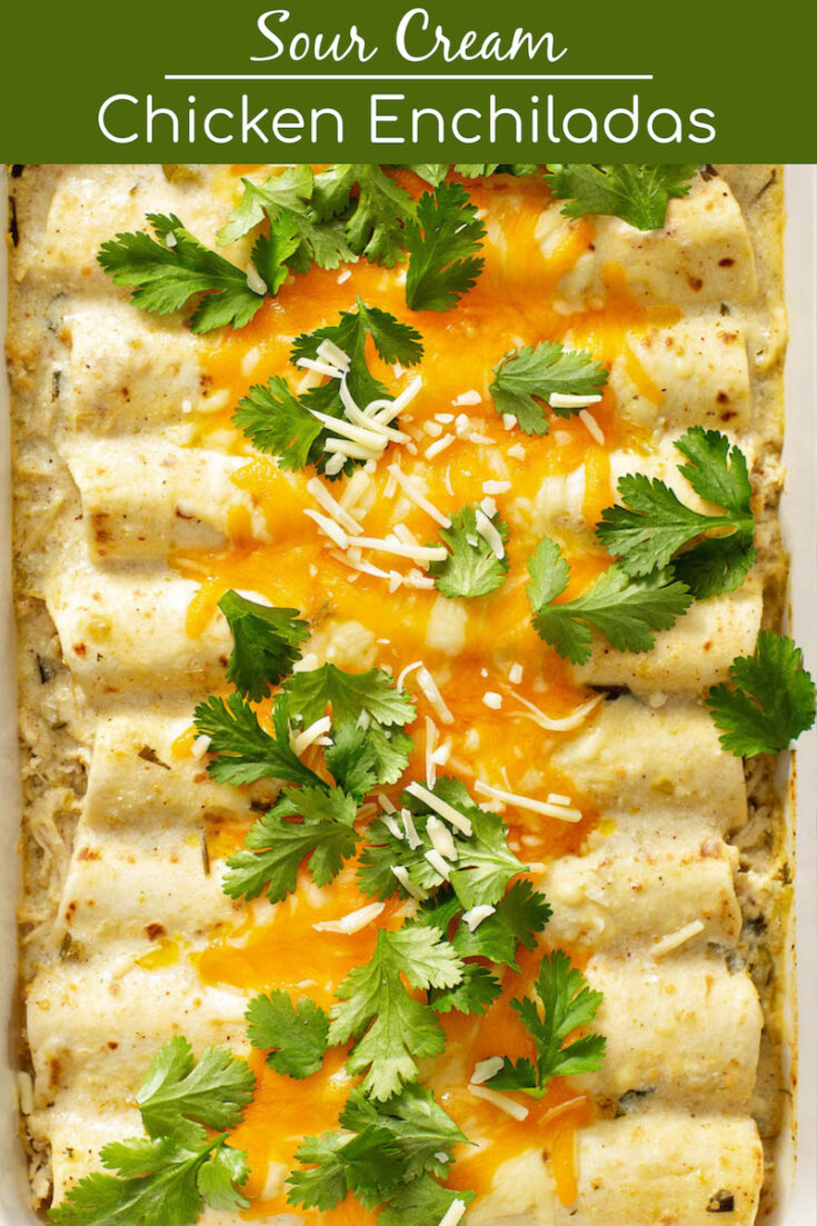 This Sour Cream Chicken Enchiladas recipe will have everyone begging for more! Made with homemade white enchilada sauce, shredded chicken & melty cheese! #ChickenEnchiladas #Enchiladas #ChickenEnchiladaRecipe #WhiteChickenEnchiladas #WhiteChickenEnchiladasRecipe #EnchiladasRecipe #Chicken #MexicanFood #TexMex #TexMexRecipes