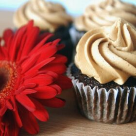 Three espresso cupcakes with a red flower