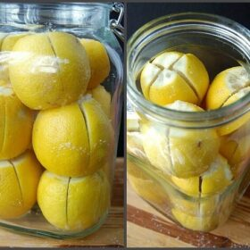 Lemons sliced and stacked in a jar.