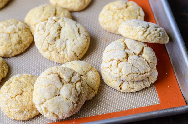 Pumpkin Sugar Cookies (recipe via thenovicechefblog.com)