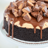 Reese's Dark Chocolate Cake on a white cake stand topped with chopped Reese's Peanut Butter Cups over chocolate ganache
