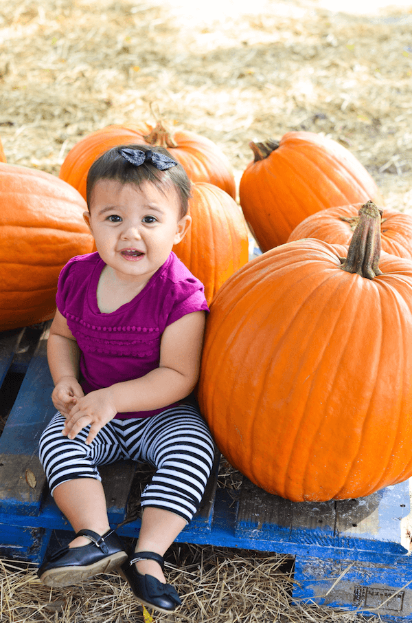 Ellie & Lyla take on the Pumpkin Patch!