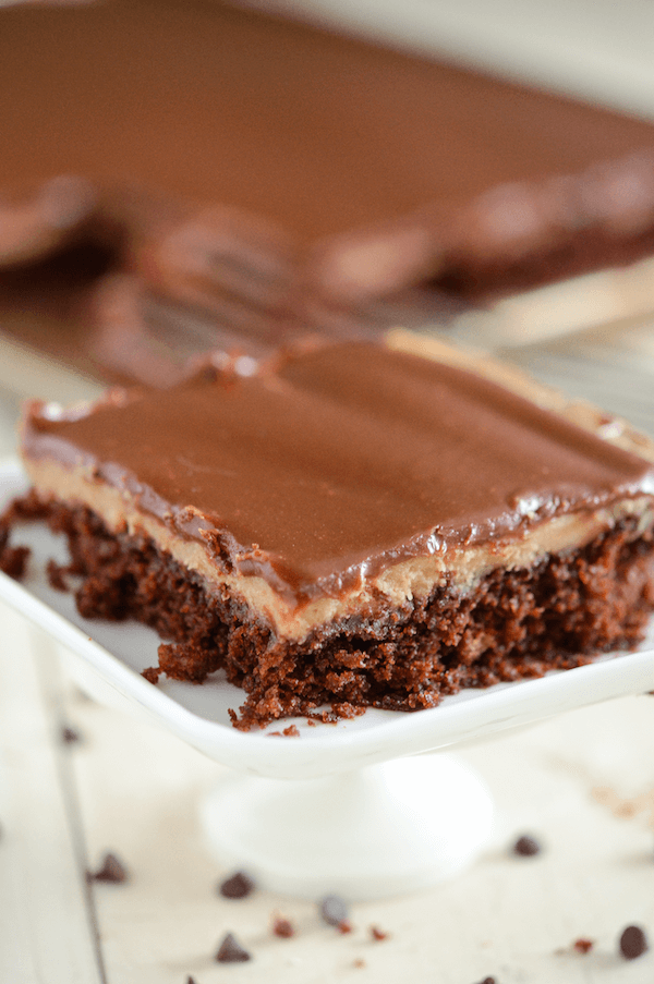 Chocolate and Peanut Butter Sheet Cake: starts with a one bowl moist chocolate cake, then a layer of creamy peanut butter frosting and finished with a layer of rich dark chocolate ganache!
