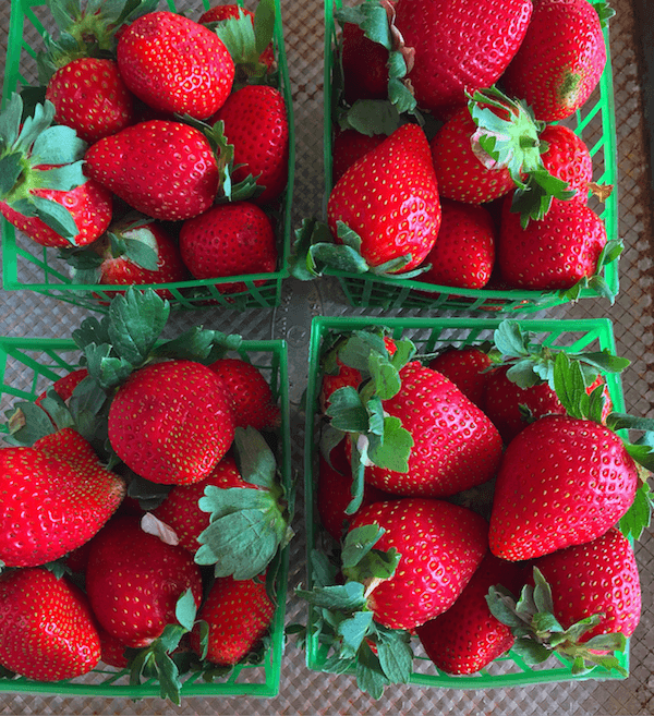 Fresh Florida Strawberries!