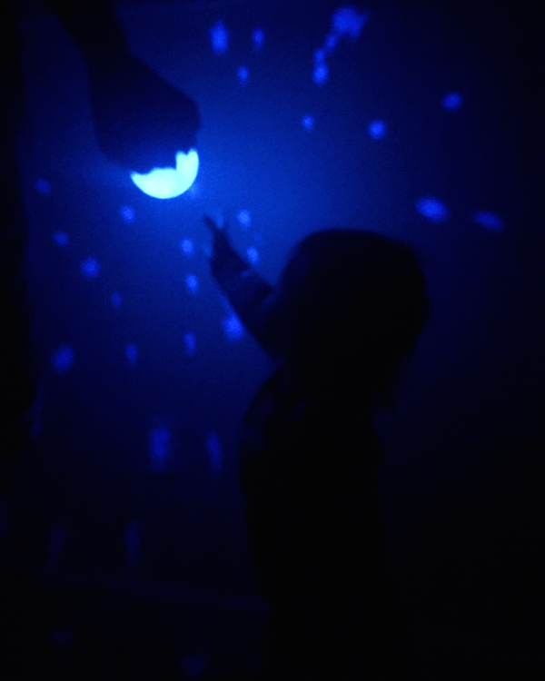 Oly the Octopus nightlight for our nightly dance parties before bed.