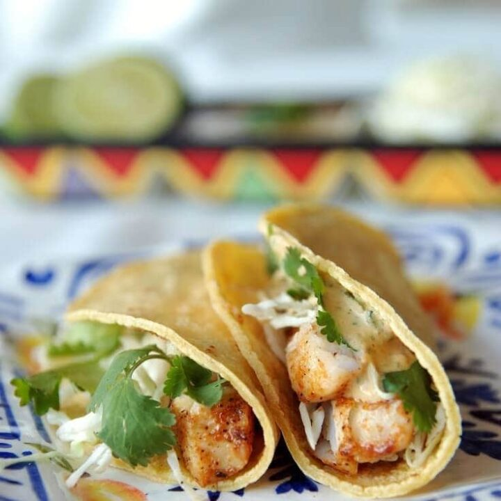 Two Blackened Fish Tacos on a Spanish Style Plate