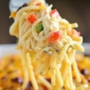 The Best Chicken Bacon Spaghetti - creamy chicken spaghetti with bacon and cheese!