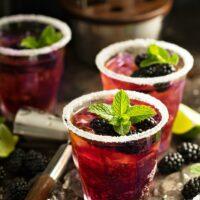 Blackberry Smash Cocktail Recipe | The Best Summer Cocktail Recipe