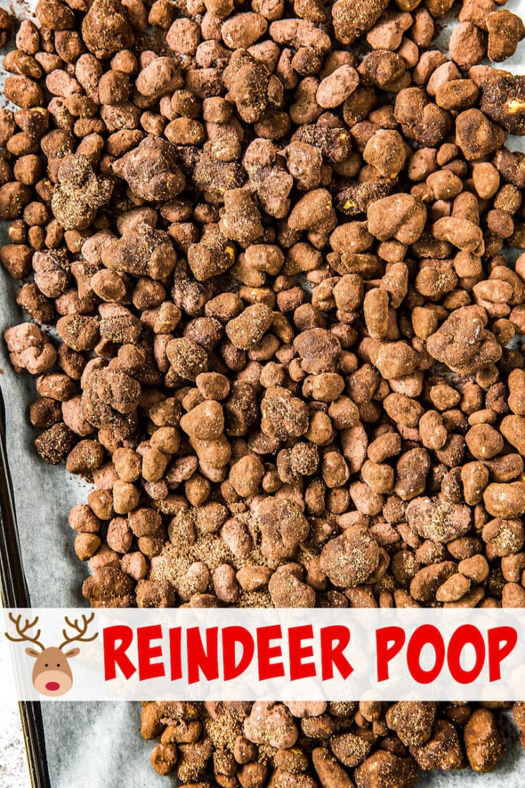 Surprise everyone with delicious Reindeer Poop! Don't worry, it's not real. Corn pop cereal is made into a version of puppy chow to look like Reindeer Poop! #ReindeerPoop #ChristmasRecipe #Christmas #Reindeer #ChristmasRecipes #KidsChristmas #KidsChristmasCrafts #MuddyBuddys #PuppyChow #Chocolate