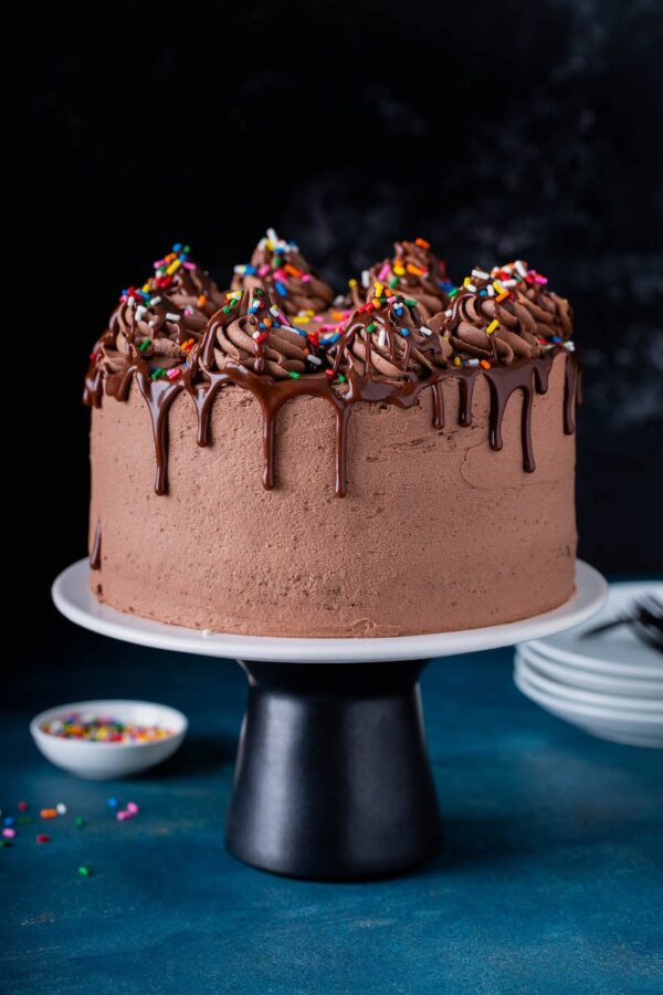 Chocolate cake on a cake stand pedestal with sprinkles in background.