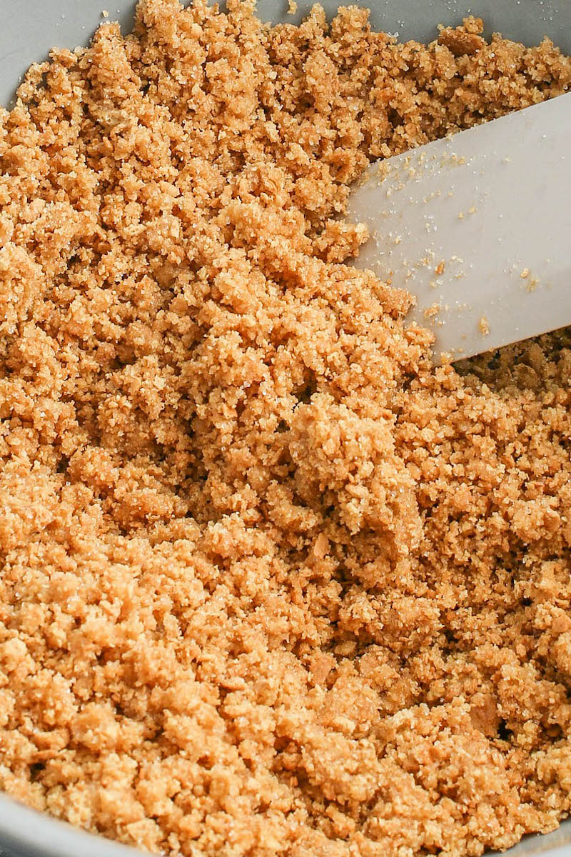 Graham cracker crumbs in a food processor.