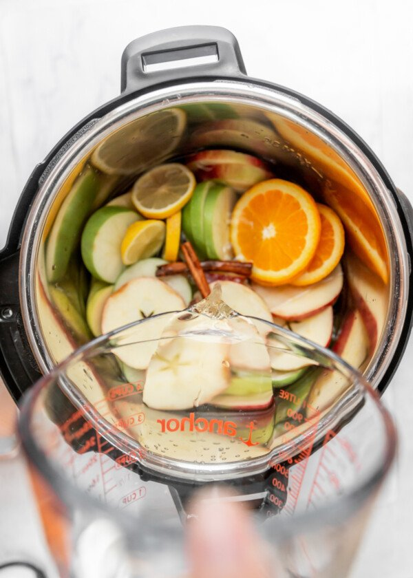 The ingredients for pumpkin apple cider in an instant pot.
